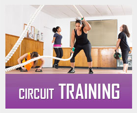 Circuit Training image